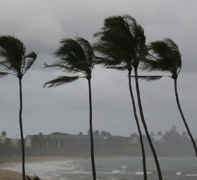 Weekly Roundup and hurricane price gouging benefits