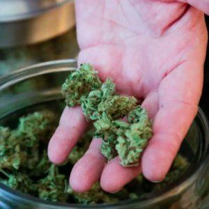 Weekly Economic News Roundup and Canada's marijuana supply