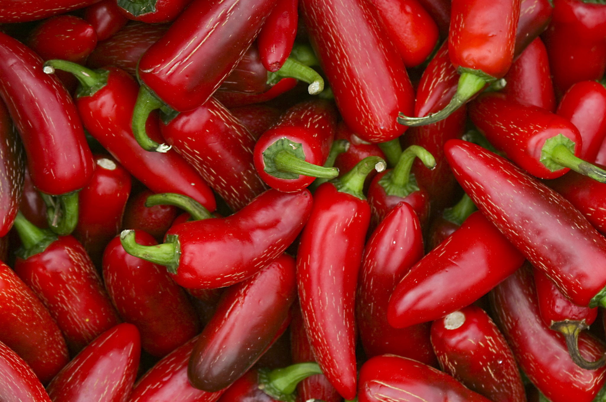 Hot sauce is a fast growing industry in the US.