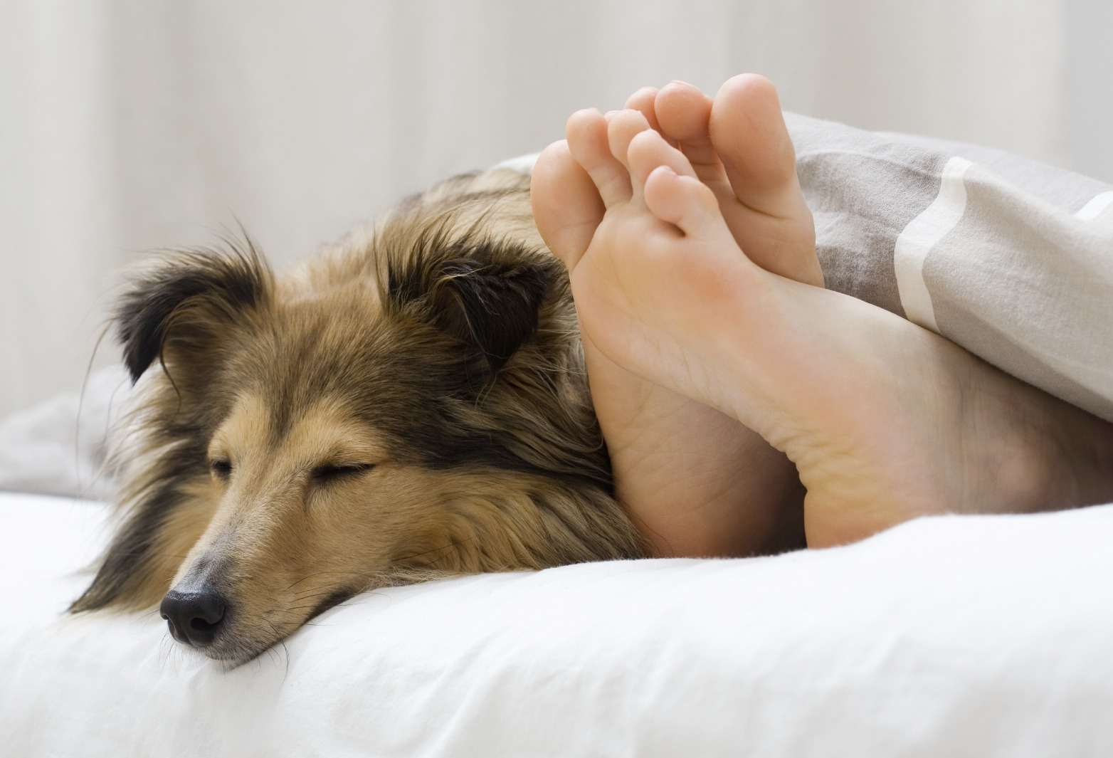 Weekly Economic News Roundup and sleep time impact