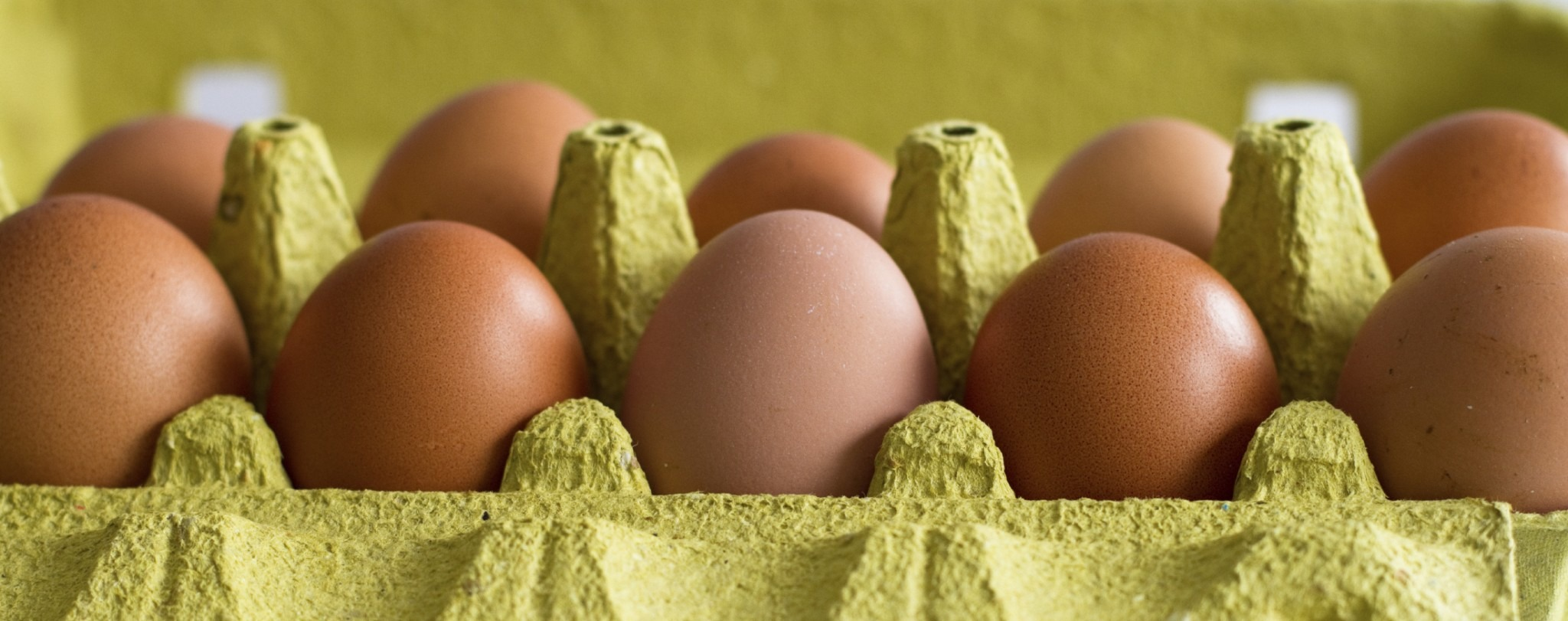 weekly economic news roundup and egg prices falling
