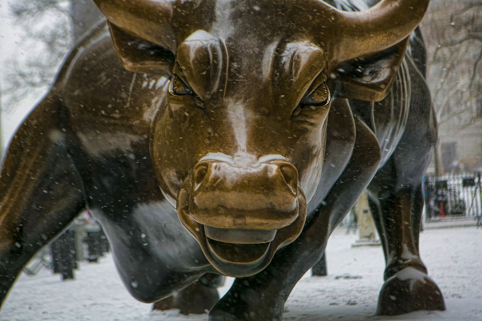 weekly economic roundup bull and bear markets