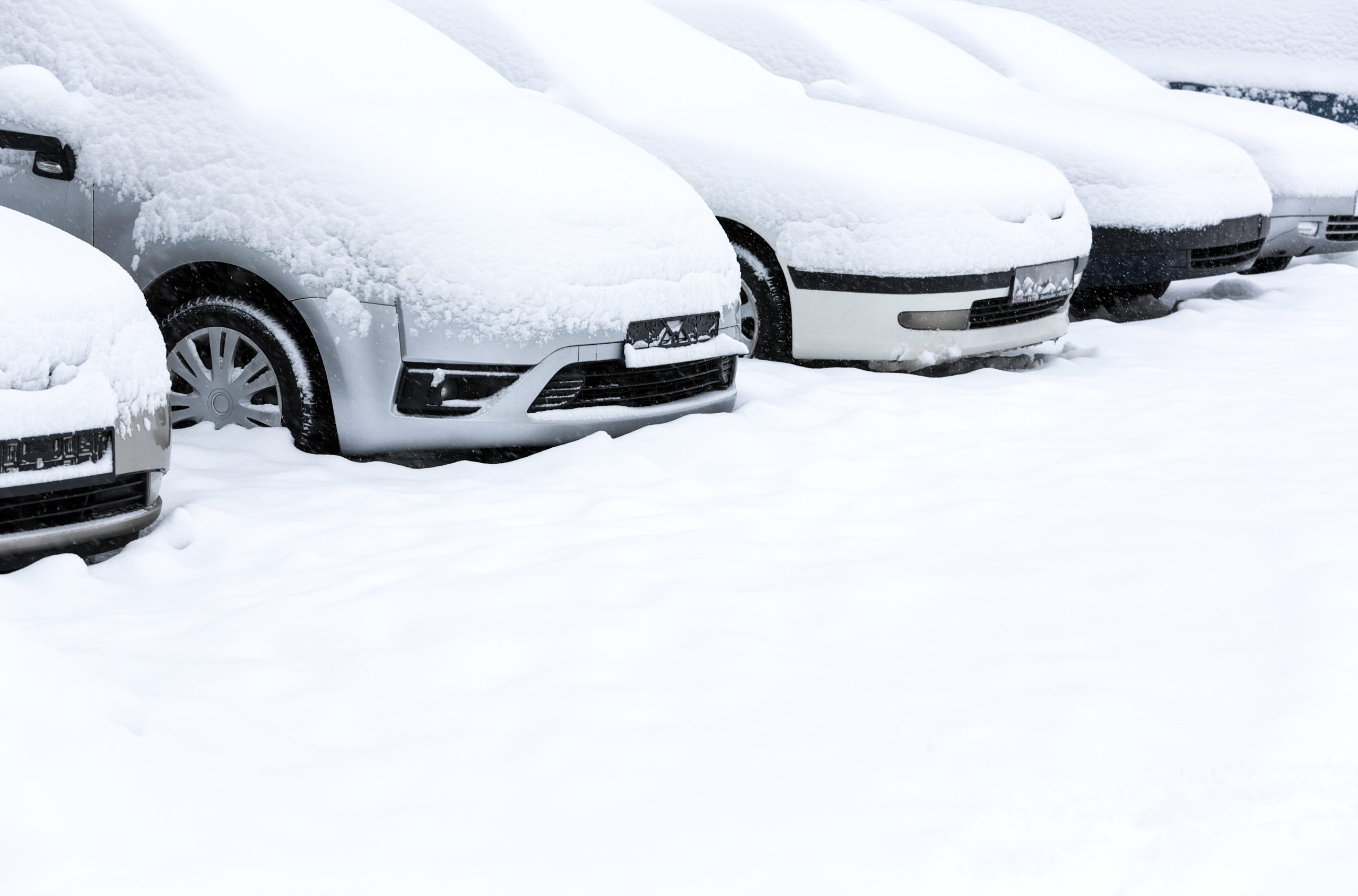 Weekly economic new roundup and winter dibs and private property