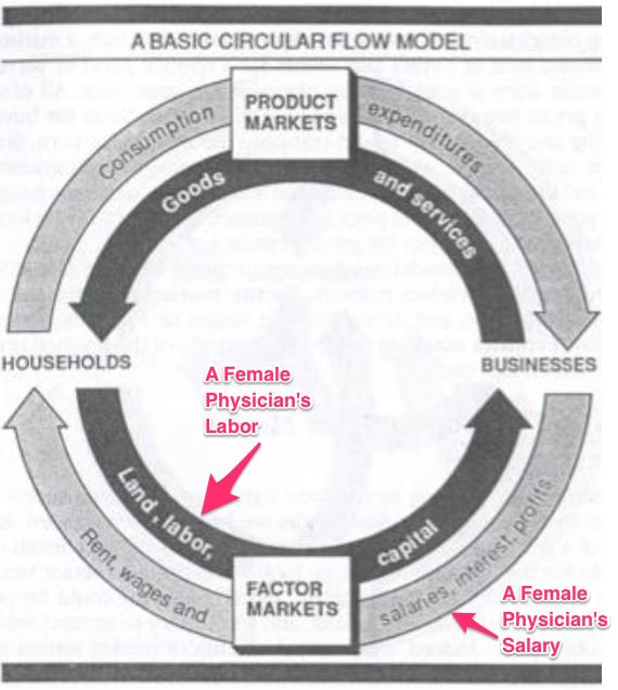 Gender pay gap and circular flow model markets