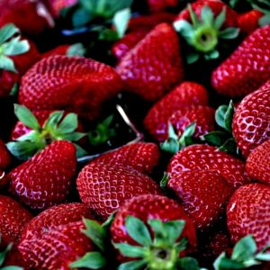Weekly economic news roundup and free trade for strawberries and chickens