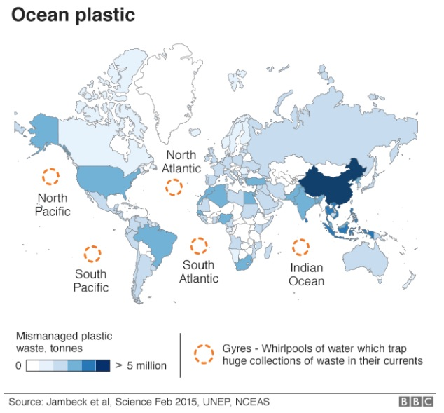 plastic-free sustainability