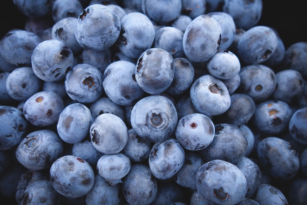 Weekly Economic News Roundup and paying for blueberries