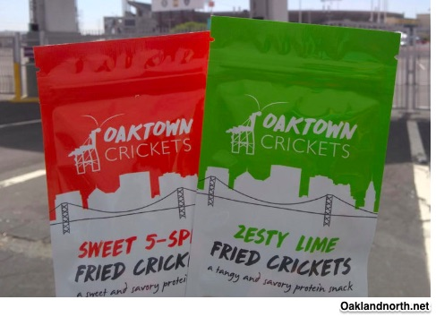 cricket farms and eating insects