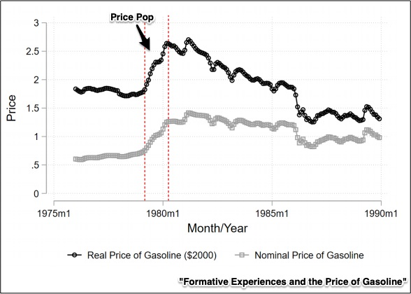 driving behavior and gasoline prices