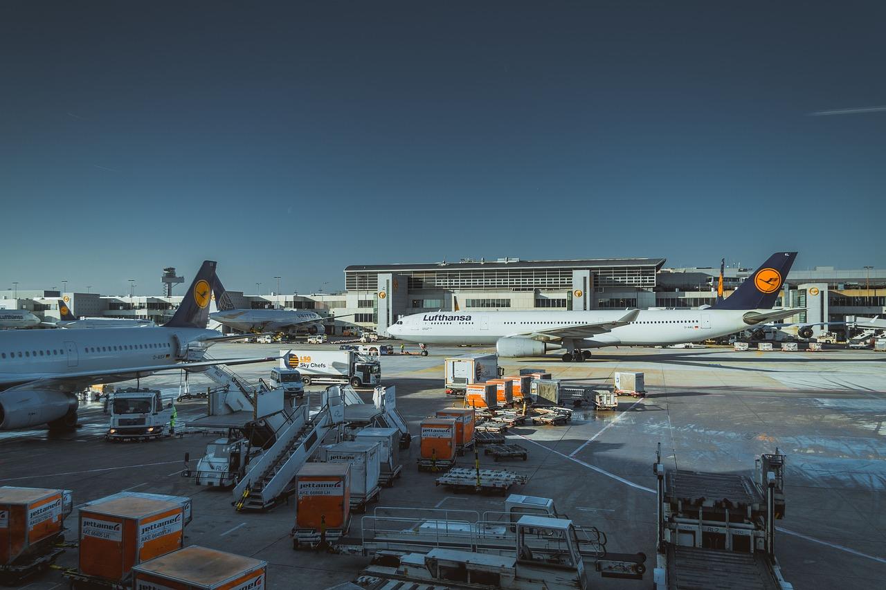 A bagagem perdida que não é reclamada pelas companhias aéreas 8