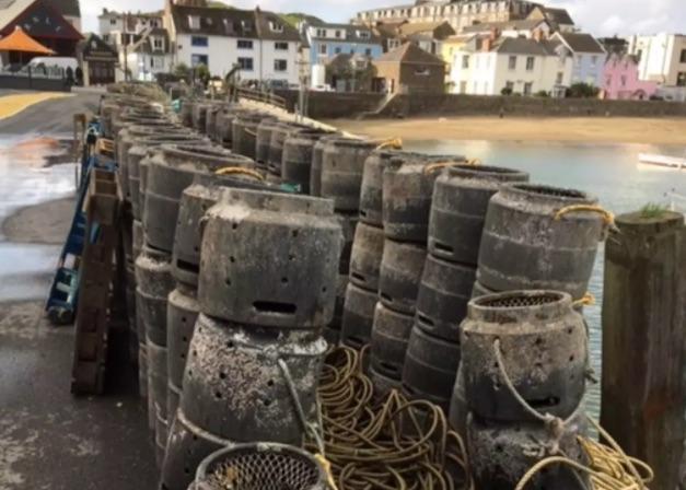 Brexit and U.K. lobsters