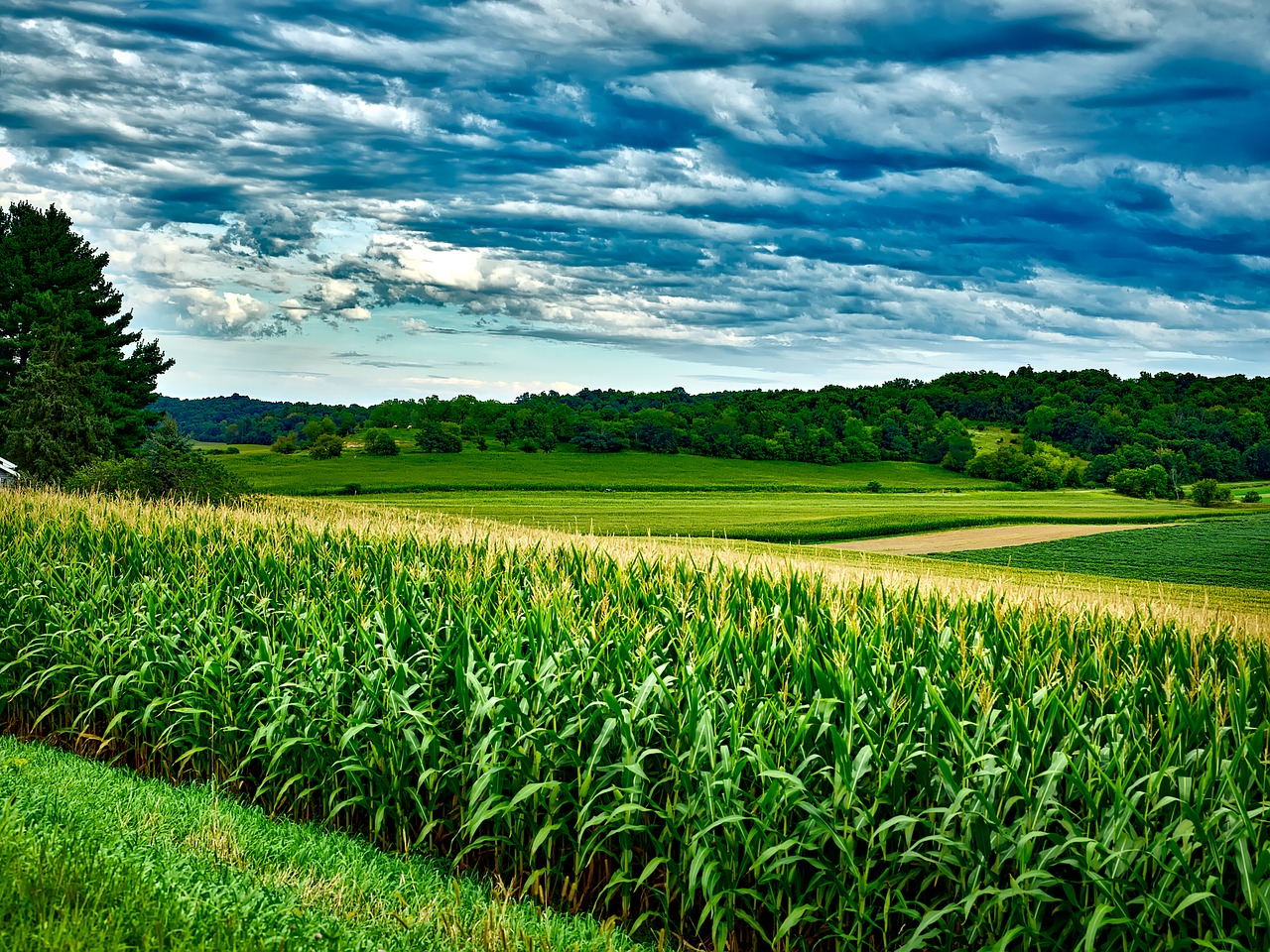 Weekly Economic News Roundup and soybeans